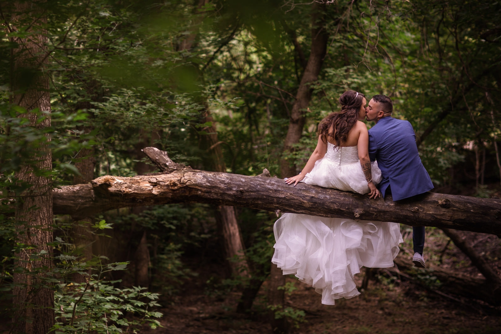 sitting in a tree wedding photo